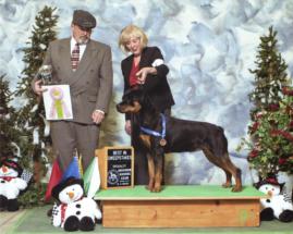Rottweiler Vanna Best In Sweeps, Hoosier Rottweiler Club 2015
